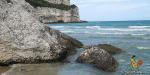 Puglia vegana – Eine vegane Reise durch Apulien
