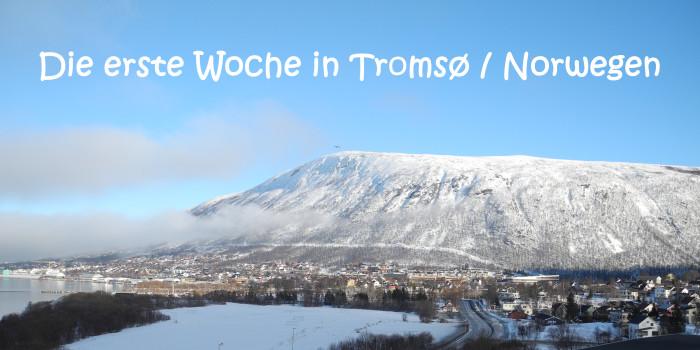 Die erste Woche in Tromsø/Norwegen
