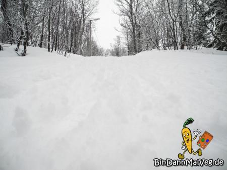 Spazieren gehen im Schnee
