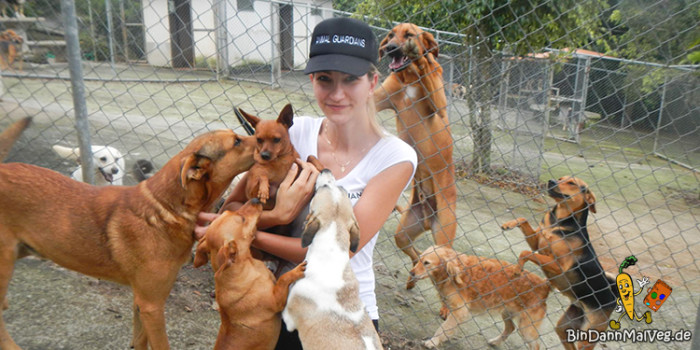 Aleksandra im Tierheim in Costa Rica